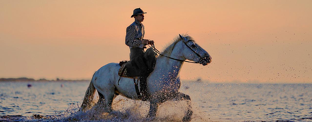 Cowboy Reitet